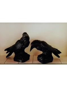 SCULPTURE  CROWS by Ottmar Horl